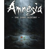 Amnesia: The Dark Descent - Platformy Steam cd-key