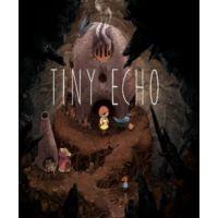 Tiny Echo - Platformy Steam cd-key
