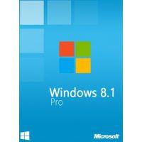 Windows 8.1 Professional OEM